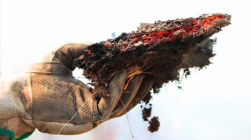 Bombeiros durante combate a focos de incêndios no Pantanal em Corumbá, MS