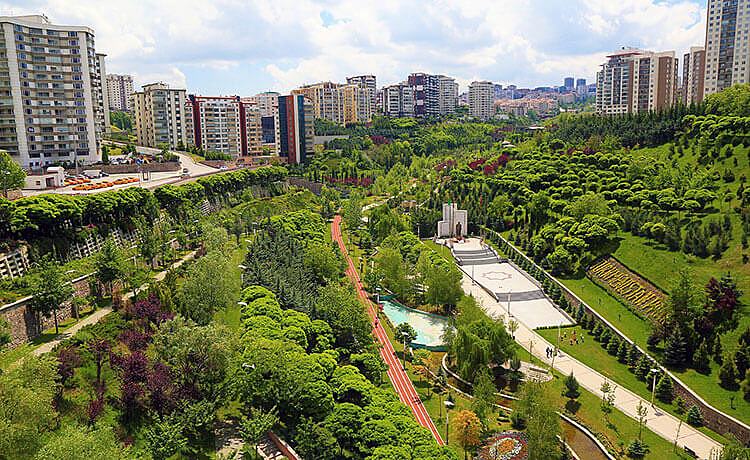 cidade, verde, sustentabilidade