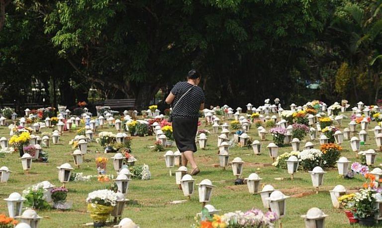 cemitério, flores, uma muleher
